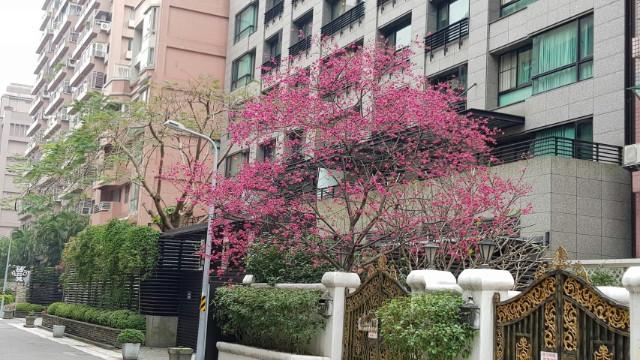 新麗緻露台明水廈,台北市中山區明水路